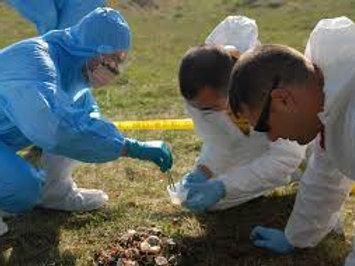 Basic Crime Scene Investigation Course