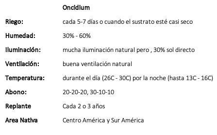 Oncidium.png
