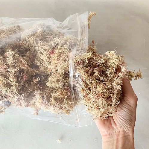 Sustrato Premium para Orquídeas