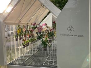 Greenhouse Orchid Cafe - Punta del Este