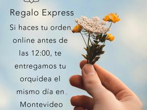 Regalo Express