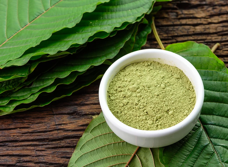 Inside Kratom, the Gas Station Drug That Could End the Opioid Crisis