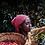 Thumbnail: Ethiopia Yirgacheffe Aricha