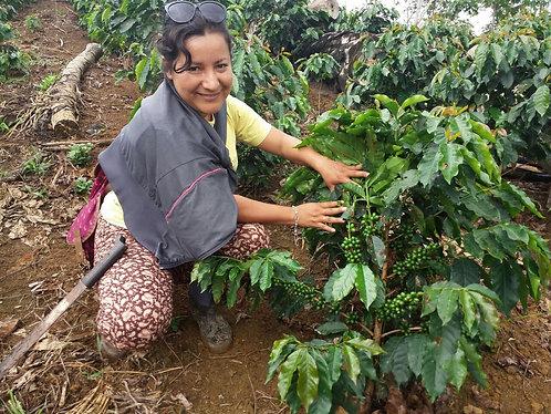 Peru  Decaf C02 Process Organic Grade 1