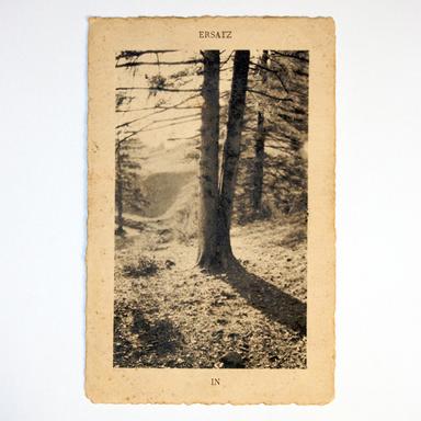 'IN' LP (2009)