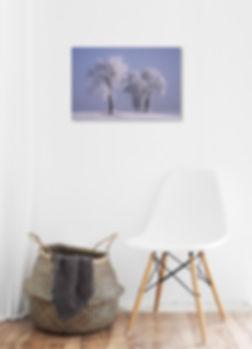 print_ad.jpg