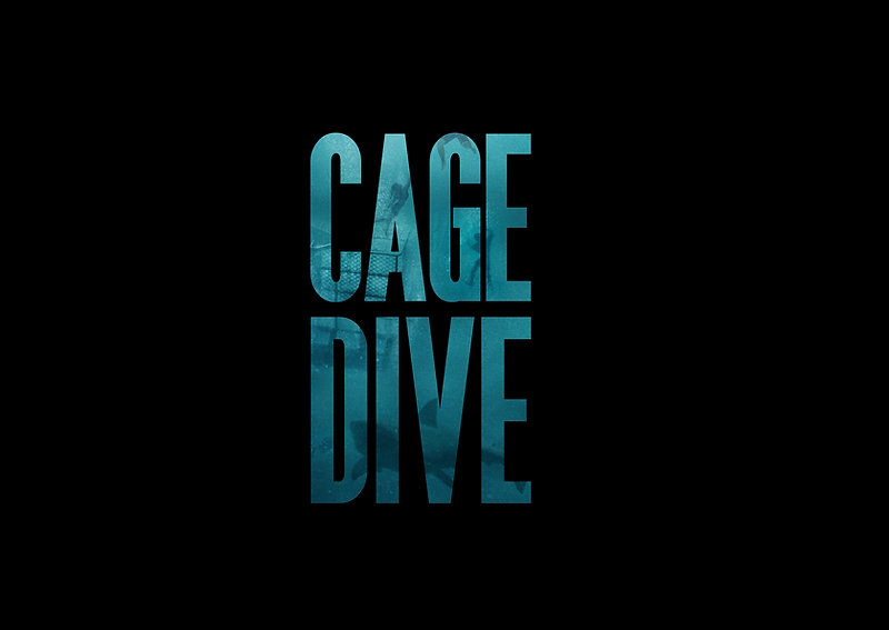 BIS Cage Dive Producer Poster_Billing Bl