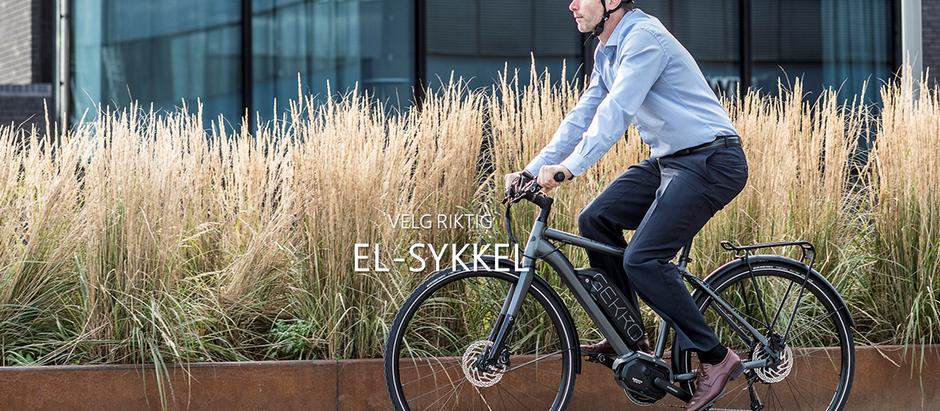 Velg riktig El-sykkel.