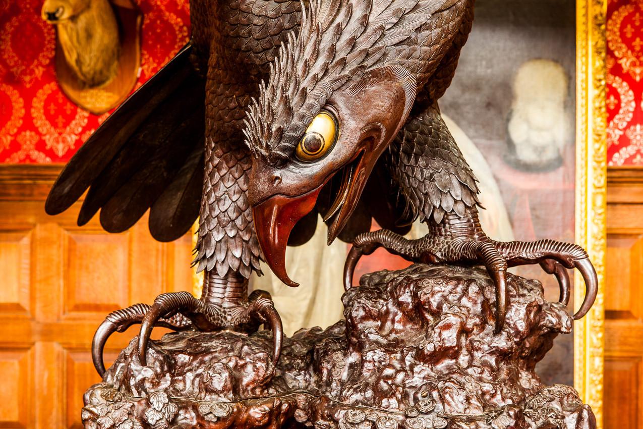 3 10 The Eagle