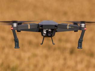 Drones, Distinctions