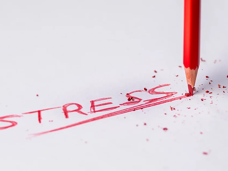Impacts of Stress on Memory