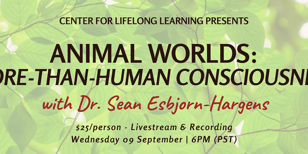 Animal Worlds: More-than-Human Consciousness
