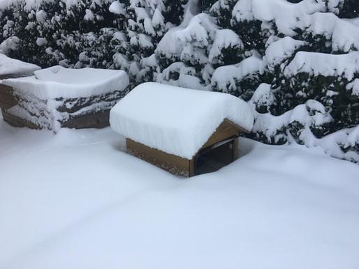 Schnee wie schon lange nicht mehr, der Garage ist's egal :)