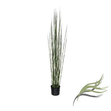 Equisetum (bamboo) ARTIFICIAL