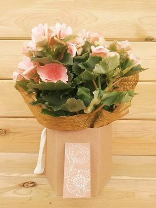 Hexágono Deco Flor
