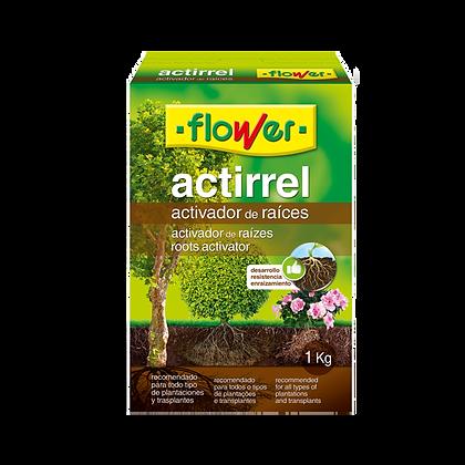 ACTIRREL