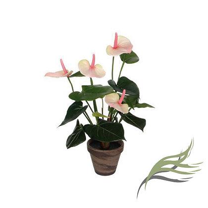 Anthurium Pink ARTIFICIAL