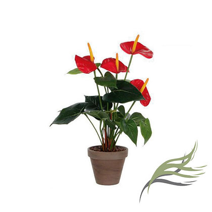 Anthurium Red ARTIFICIAL