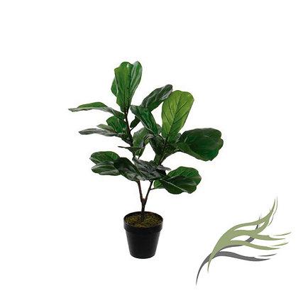 Ficus Lyrata ARTIFICIAL