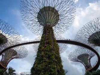 Smart Cities - kan høyteknologi være løsningen for framtidens byer?
