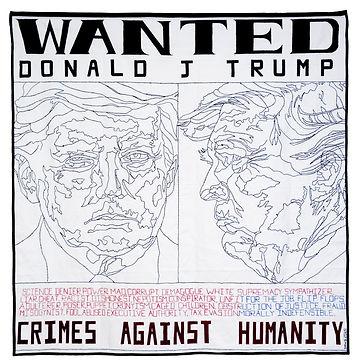 Williams Boyd_q_The Trump Era_Crimes Aga