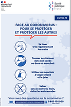 gestes barriere coronavirus.PNG