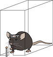 mouse_headbar_reaching.png