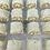 Thumbnail: Coconut Minis
