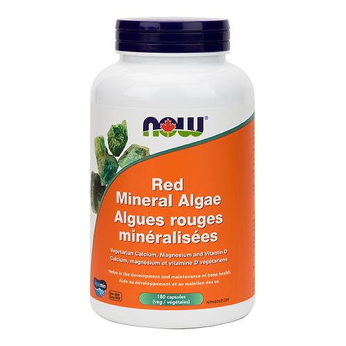 Now Red Mineral Algae Veg Capsules