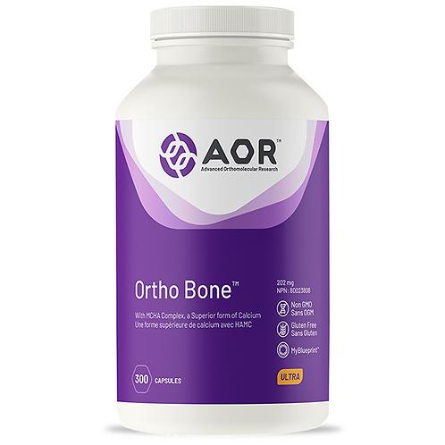 AOR OrthoBone 300