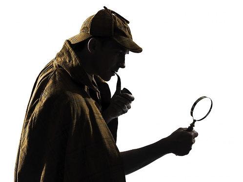 Sherlock Holmes: A New Case