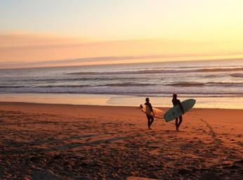 Drei Gründe warum du 2020 mit dem Surfen anfangen solltest