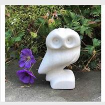 owls nest.jpg