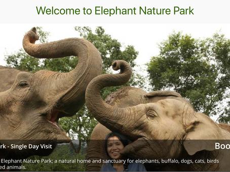 ELEPHANT FOUNDATION