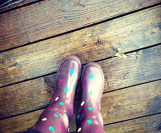 Blume Bauer's party boots, also known as rain boots, on the deck of our tiny cabin in a rain forest on Tenmile Lake on the Oregon Coast.