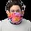 Blushing Rock Roses Gaiter man mask