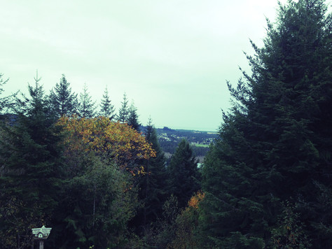 Murder House in Florence: Our Oregon Adventure Part IV