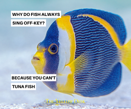 YellowFunniesTunaFish.png