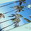 Thumbnail: Lifeguard Tower in Hawaii Jigsaw Puzzle