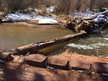 Update and Change to the Beaver Habitat Project