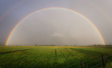 rainbow over a feld