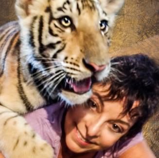 tiger 1a crop.jpg
