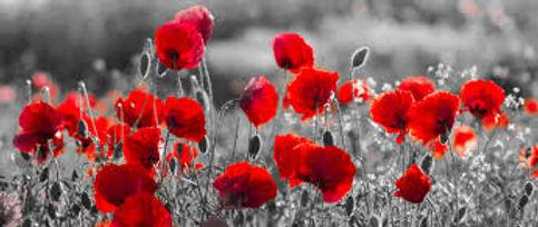 red-black-white.jpg