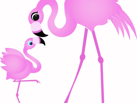 The Flamingos are Coming