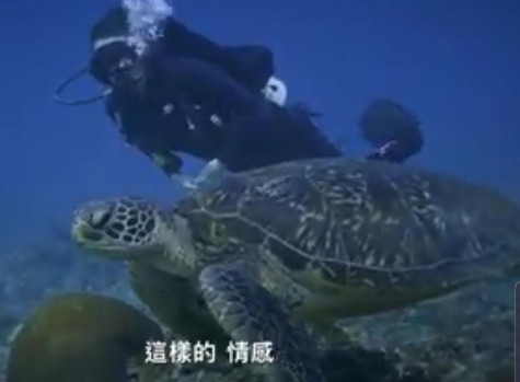 A poem I did for a dive company from Taiwan
