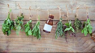5-plantes-medicinales-a-faire-pousser-ch