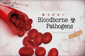 SMS023 - Bloodborne Pathogens - Patagenos Transmitidos por Sangre