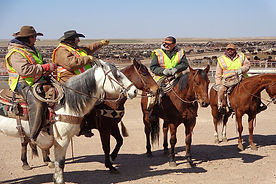 SMS210 - Cowboy Safety: Horses and Pen Conditions - Condiciones de Caballos y Corrales