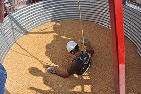 SMS021 - Buried in Grain: Grain Entrapment and Engulfment - Atrapamiento en Inmersión En Grano