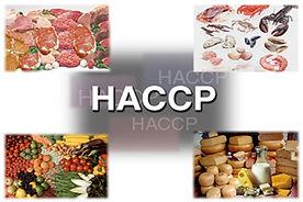 SMS050 - HACCP: The Basics - HACCP Conceptos Básicos